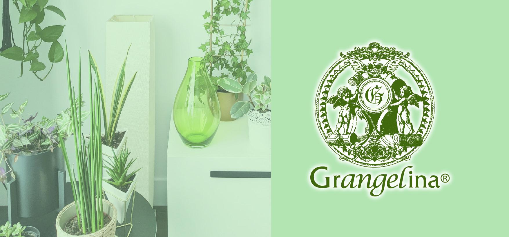 Grangelina